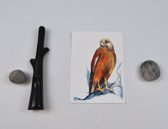 Watercolor Hawk Archival Print 5x7