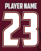 Load image into Gallery viewer, Cardinal S2N Custom T-Shirt with Name and Number