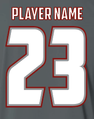 Gray S2N Custom T-Shirt with Name and Number