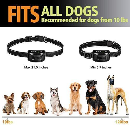 Tebaba Dog Bark Collar - Dog Anti Bark Collar - Stop Barking with Beep/Vibration/Harmless Shock, Rechargeable and Waterproof Humane No Bark Control for Small Medium and Large Dog