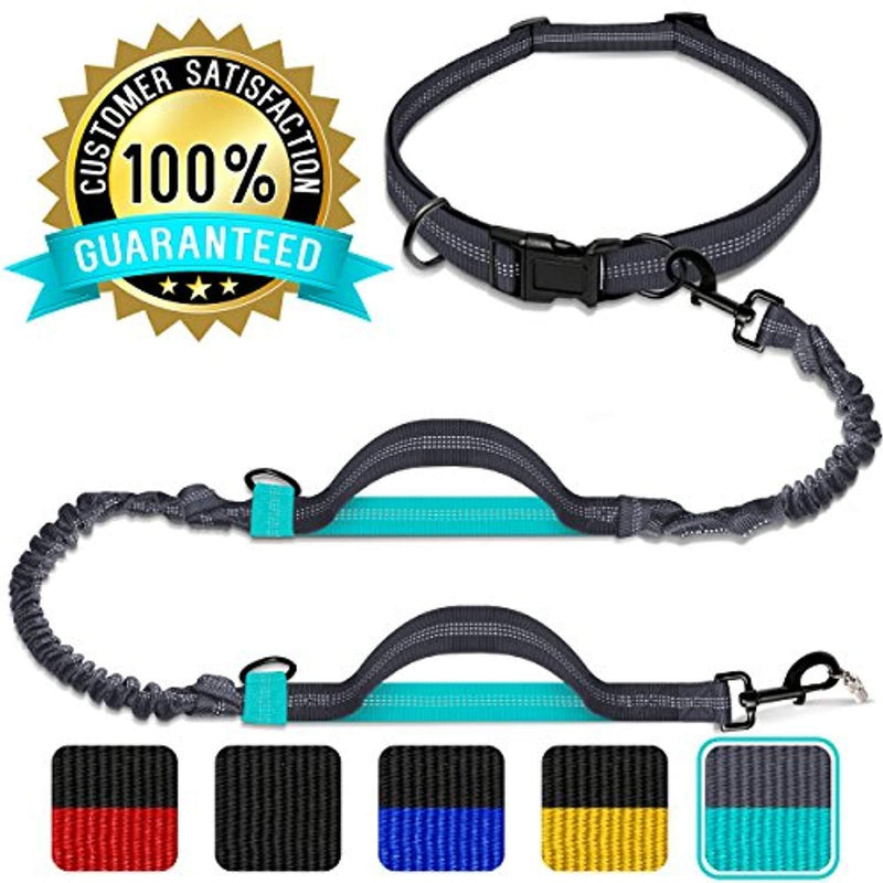 Benicci Hands Free Waist Dog Leash - Strong, Durable & Safe - For Jogging, Walking & Hiking - For Medium and Large Dogs & Multiple Dog Owners - With FREE ID Tag - Adjustable Waist with 5 Color