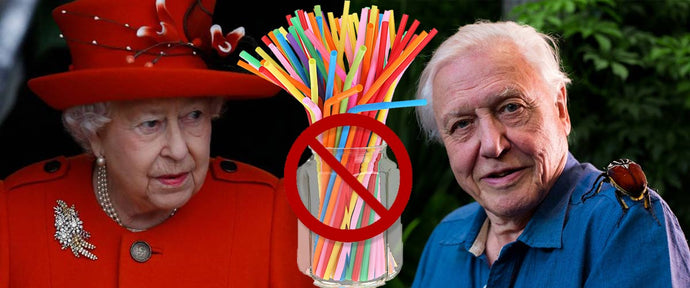 The Queen Bans Plastic Straws Thanks To David Attenborough
