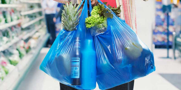 replace plastic bags with environmentally friendly options