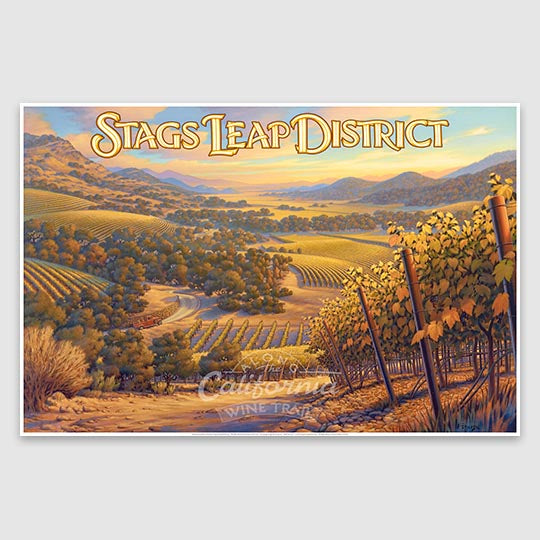 Stag's Leap District AVA Canvas Poster Print