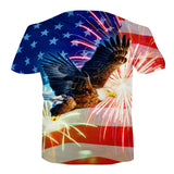 American Flag Soring Eagling With Fireworks - Amazing Steals N Deals