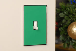 UC08 Pea Green/ 1-Gang Toggle Cover & Chrome Frame