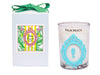 Luxury Seahorse Palm Beach 100% Coconut SOY 8 oz. Candle
