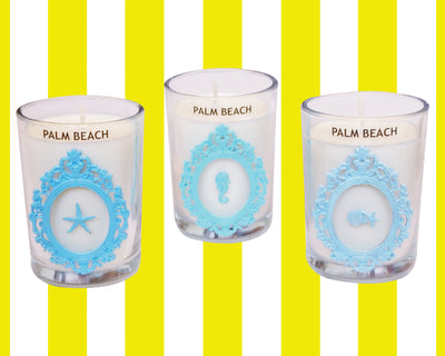 Luxury Seashell Palm Beach 100% Coconut SOY 8 oz. Candle