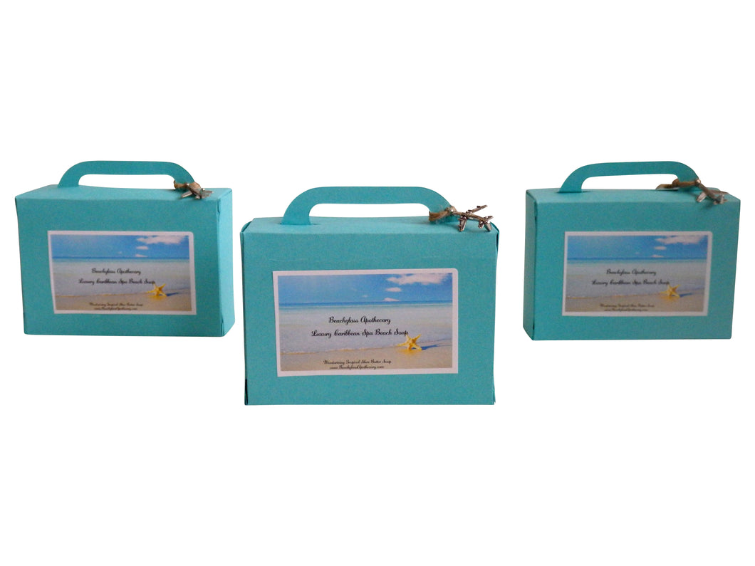 Vacation Suitcase Spa Soap-Free Airplane Jewelry Charm