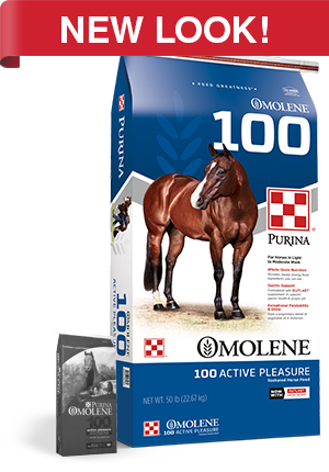 Omolene 100 Active Pleasure