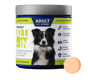 All-In Adult Dog Supplement - 90 Count
