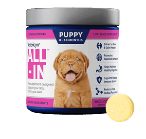 All-In Puppy Supplement - 90 Count