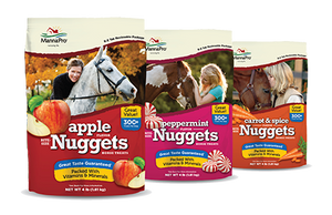 Bite Size Nugget Treats
