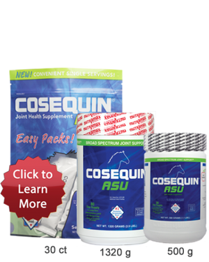 Cosequin ASU for Equine