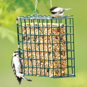 Suet Basket Feeder
