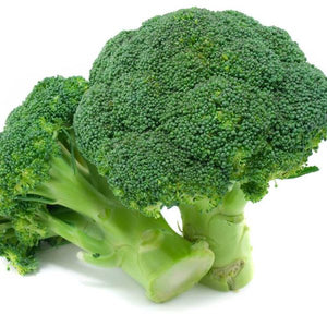 BROCCOLI - GREEN MAGIC HYBRID