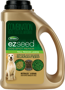ezseed dog spot repair