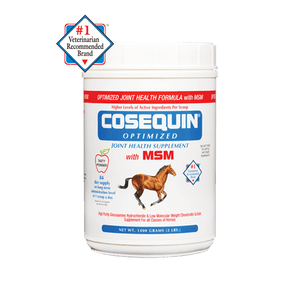Cosequin Optimized with MSM Powder