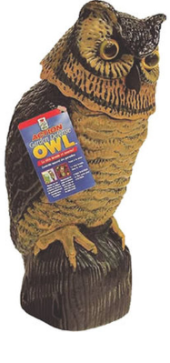 Owl Garden Defense Rotating Head