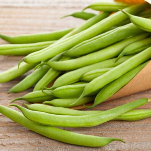 POLE BEAN - KENTUCKY WONDER