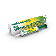 Safe-Guard Paste for Equine