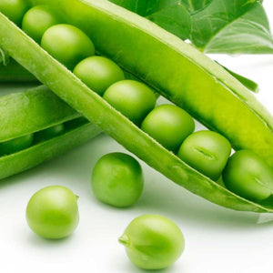 SUGAR SNAP - TALL PEA