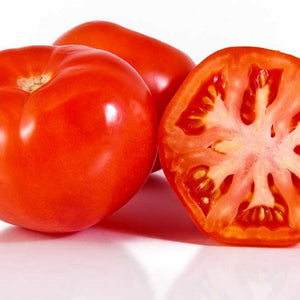 MOUNTAIN FRESH PLUS TOMATO