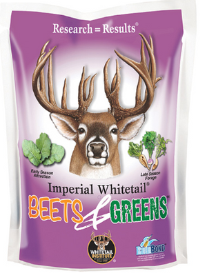 Deer Whitetail Winter Greens