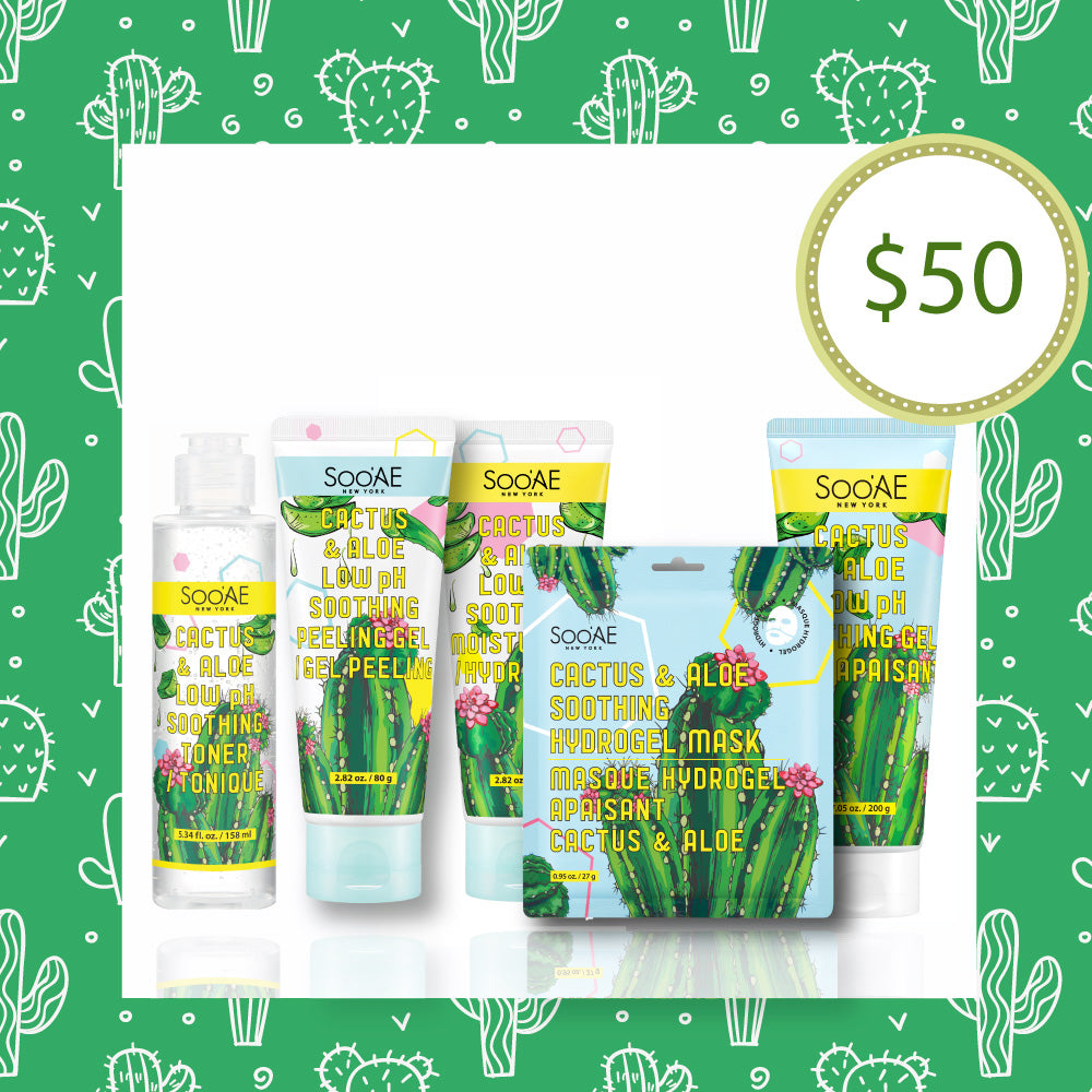 Cactus & Aloe Collection (until 8/30)