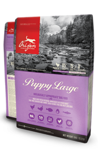 Orijen Dog Food: Puppy Large. Available online from Yes.Pet