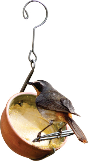 Nutty Putty Pudding Feeder