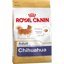 Royal Canin Dog Food: English Bulldog Adult (12 months to Adults and Mature). Available online from Yes.Pet