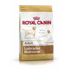 Royal Canin Dog Food: Labrador Retriever Adult (15 months to Adult and Mature). Available online from Yes.Pet