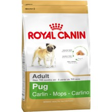 Royal Canin Dog Food: Pug Adult (10 months to Adult and Mature). Available online from Yes.Pet