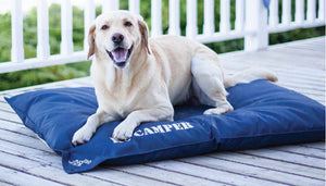 Wagworld Dog Bed: Wagworld - K9 Camper. Available online from Yes.Pet