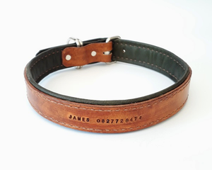 Point Leather Dog Collar: Lined and stitched collar. Available online from Yes.Pet