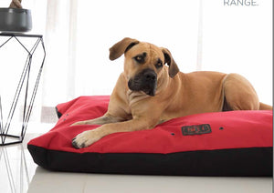 Wagworld Dog Bed: Wagworld - Paw X 4. Available online from Yes.Pet
