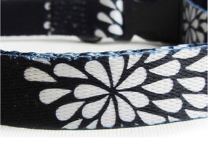 Dog's Life Dog Collar: Designer Pooch Webbing Collar - White Petals on Navy. Available online from Yes.Pet