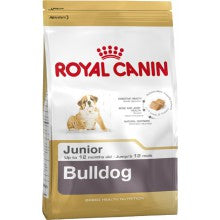 Royal Canin Dog Food: English Bulldog Junior (2 to 12 months). Available online from Yes.Pet