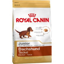 Royal Canin Dog Food: Dachshund Junior (2 - 10 months). Available online from Yes.Pet
