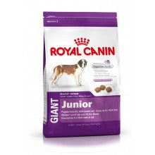 Royal Canin Dog Food: Giant Junior (8 to 24 Months). Available online from Yes.Pet