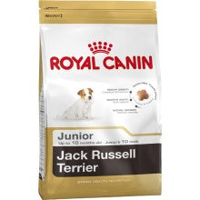 Royal Canin Dog Food: Jack Russell Junior (2 to 10 months). Available online from Yes.Pet
