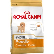 Royal Canin Dog Food: Poodle Junior (2 to 10 months). Available online from Yes.Pet
