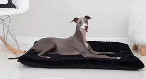 Wagworld Dog Bed: Wagworld - Snuggle Rug. Available online from Yes.Pet