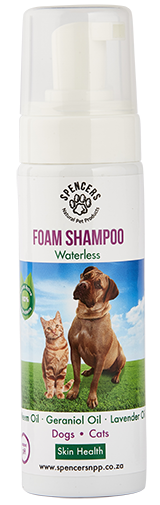 Waterless Foam Shampoo