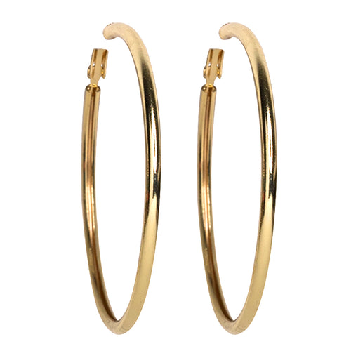 Quest/ September 2018 - Small Gold Hoop Pierced Earrings