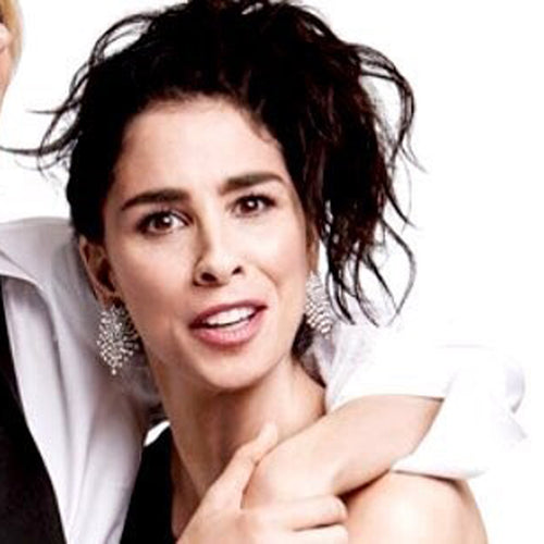 Sarah Silverman in the Gunmetal And Crystal Pierced or Clip Earrings