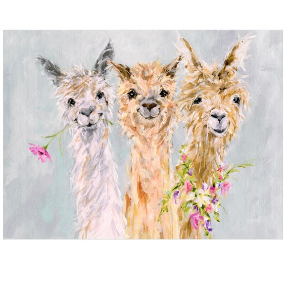 Sweet Alpacas Canvas Wall Art 18x14