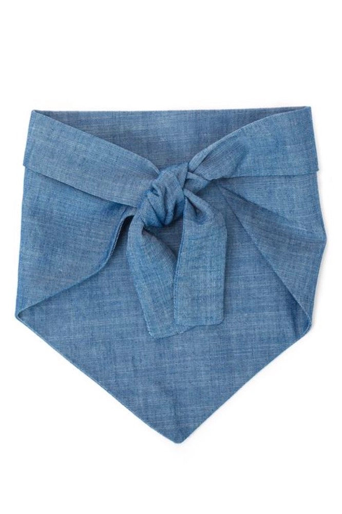 Dog Handkerchief Chambray: My Dad Is Single