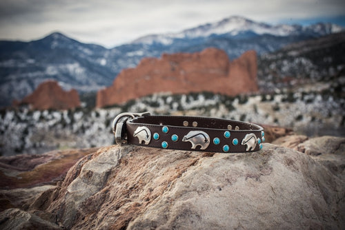 Brown Leather and Turquoise Dog Collar
